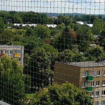 siatka na balkon z widokiem na bloki