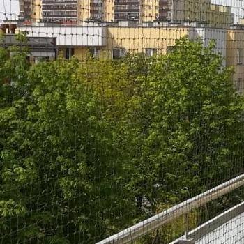 siatka na balkonie białym nad drzewami