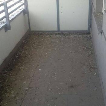 siatki-na-balkon111
