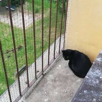siatki-na-balkon18