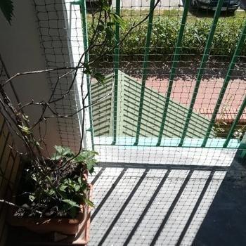 siatki-na-balkon31