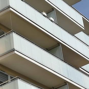 siatki-na-balkon65